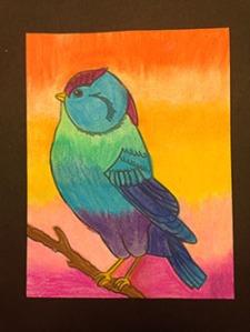 Birds (6)